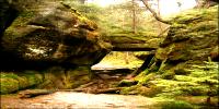 Simkea-Ortschaft:Eingang zum Dämmerwald